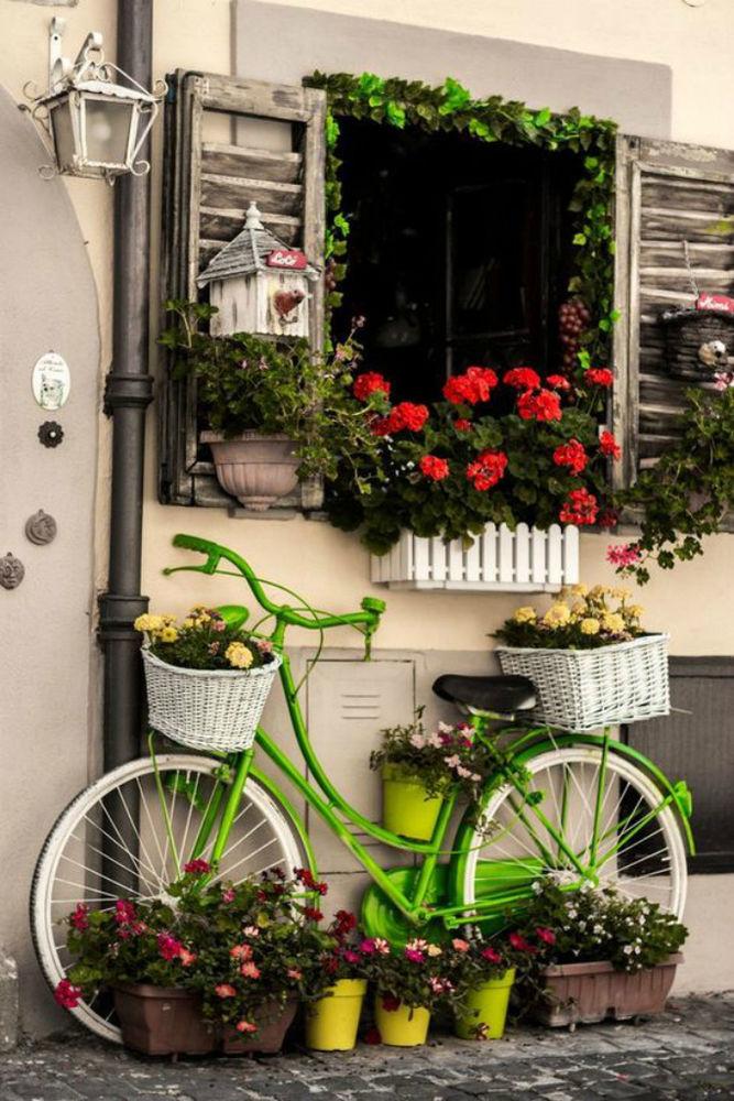 Велосипед на даче как антураж картинки