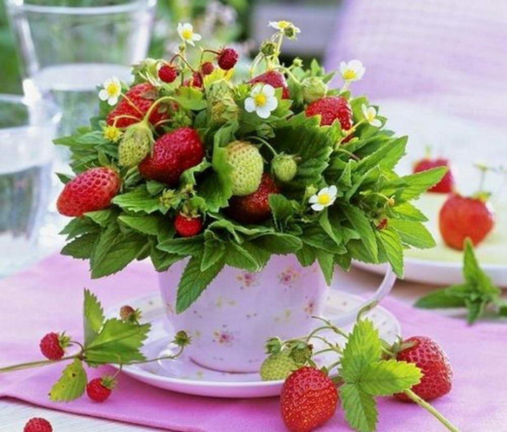 рыбка хамса поздравления для ягоды только такие