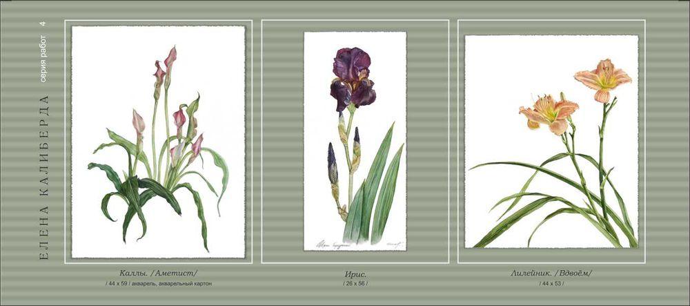 картина для интерьера, цветы акварелью, картина с цветами, лилейник, ирис, каллы, розовые цветы, фиолетовый, бежевый, реалистичные цветы