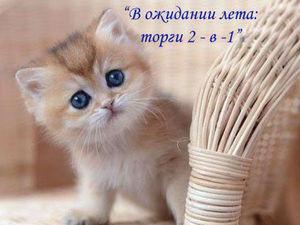 Торги 2 - в - 1 Продолжаются! | Ярмарка Мастеров - ручная работа, handmade
