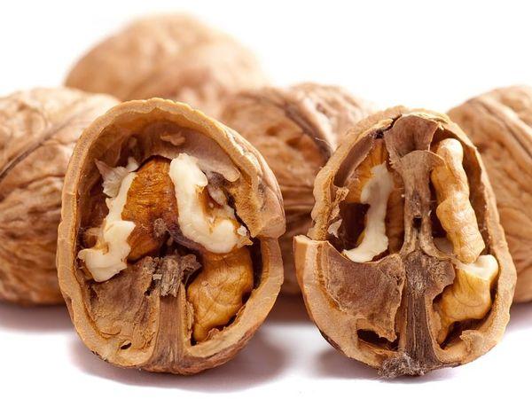 О масле грецкого ореха | Ярмарка Мастеров - ручная работа, handmade