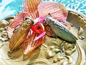 Сегодня в мой магазин прилетят две цикады эпохи Арт Нуво!. Ярмарка Мастеров - ручная работа, handmade.