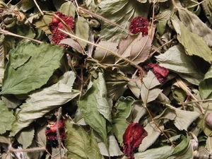 Новый травяной чай с ягодой сушеной. Ярмарка Мастеров - ручная работа, handmade.
