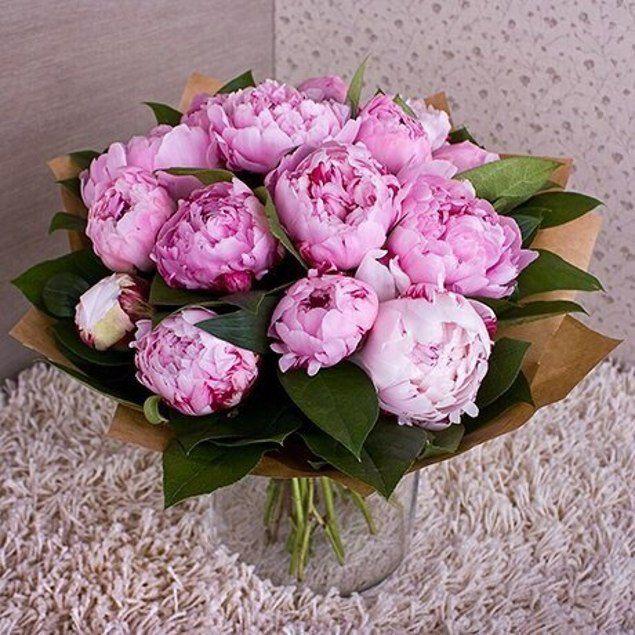 Фото цветов пионов букет