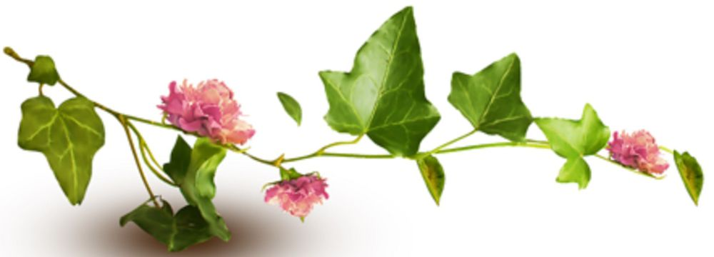 статья, украшения ручной работы, растения