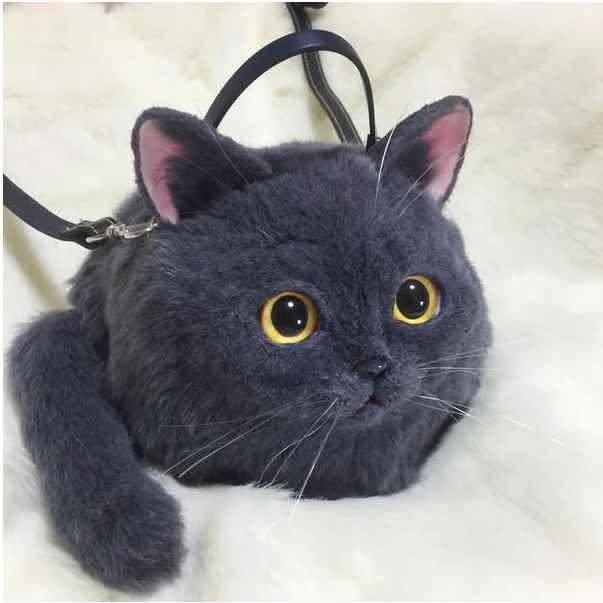 коты, сумка с котом