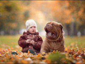 «Маленькие дети и их большие собаки» — фотопроект Андрея Селиверстова | Ярмарка Мастеров - ручная работа, handmade
