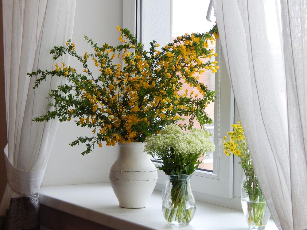 Цветущий край, Белгородчина., фото № 9