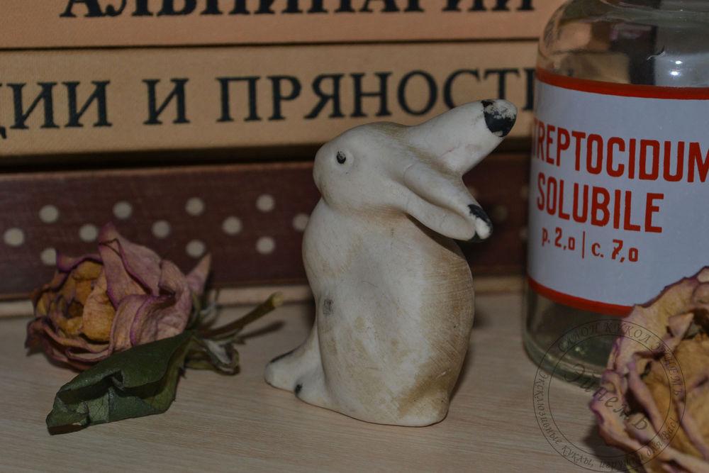 кролик, книги, латынь
