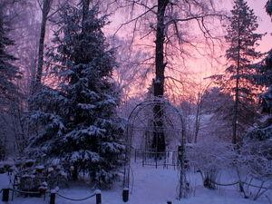 Зима в моем саду. Ярмарка Мастеров - ручная работа, handmade.