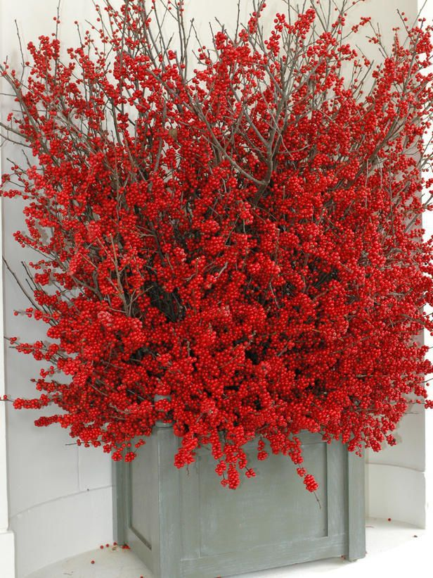 Sprigs of winterberry are gorgeous for decorating for Christmas. Decorating the White House for the Holidays : On_tv : HGTV