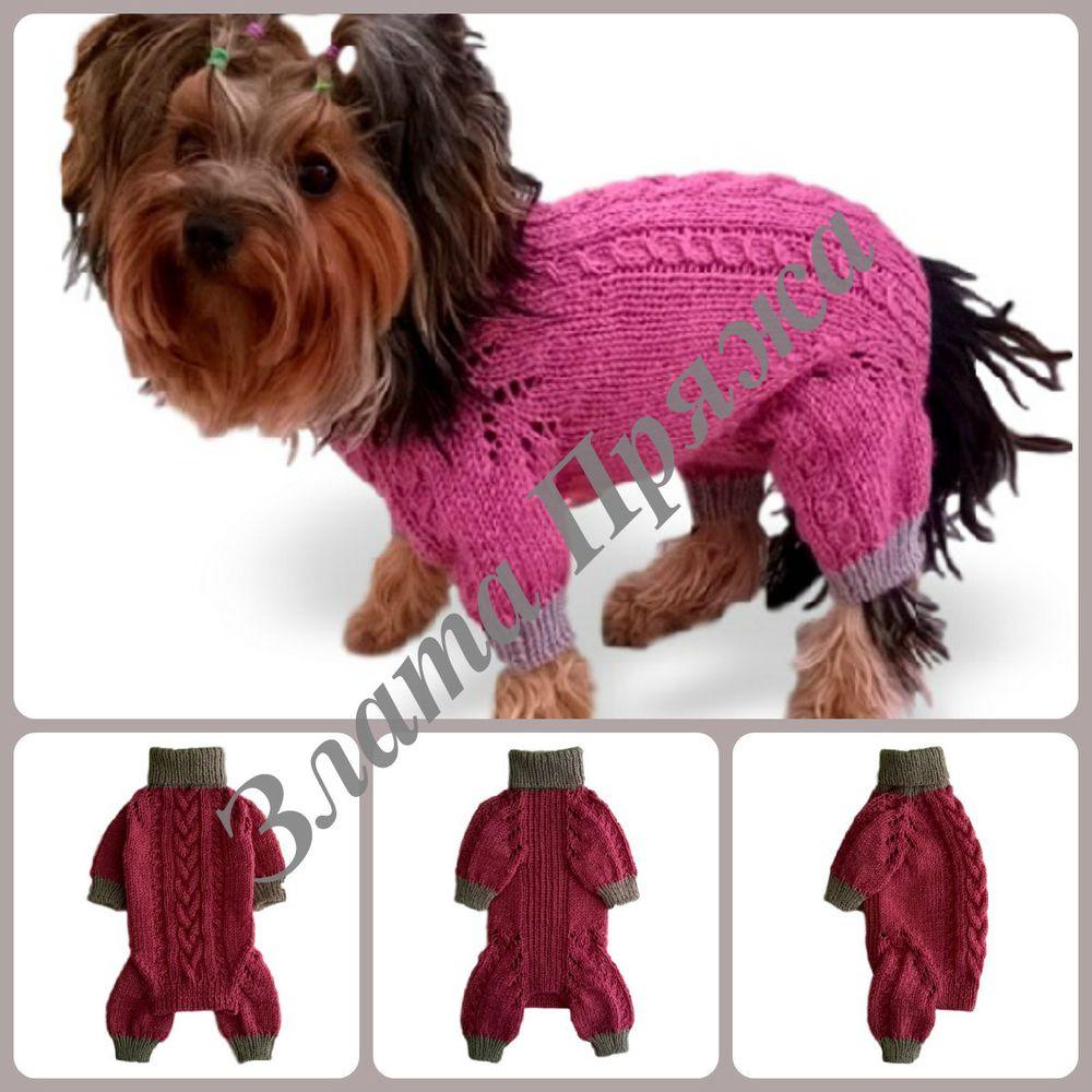 комбинезон йорку, комбинезон собаке, одежда для собак, одежда для йорков, комбинезон тойтерьеру, комбинезон чихуахуа, злата пряжа