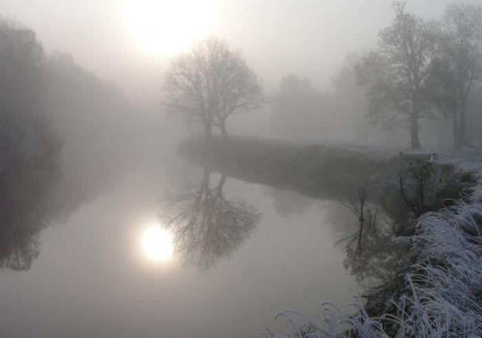 кольцо, туман, моховой агат