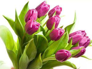 С праздником Весны!!! | Ярмарка Мастеров - ручная работа, handmade