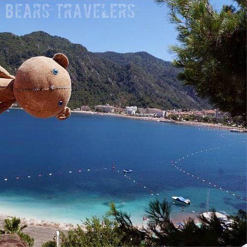 медведь, игрушки