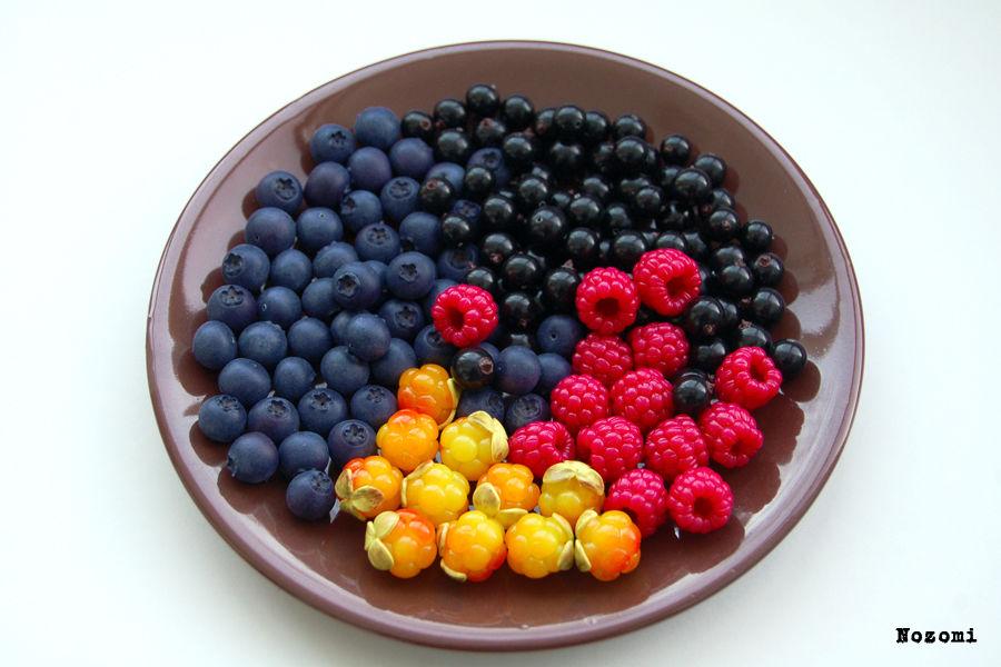 ягоды, хобби, облепиха