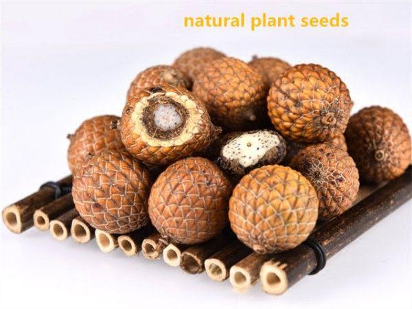 буддизм, бусины из семян и орехов
