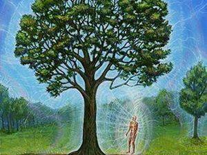 Биоэнергетика деревьев. Лечение энергией Деревьев. Ярмарка Мастеров - ручная работа, handmade.