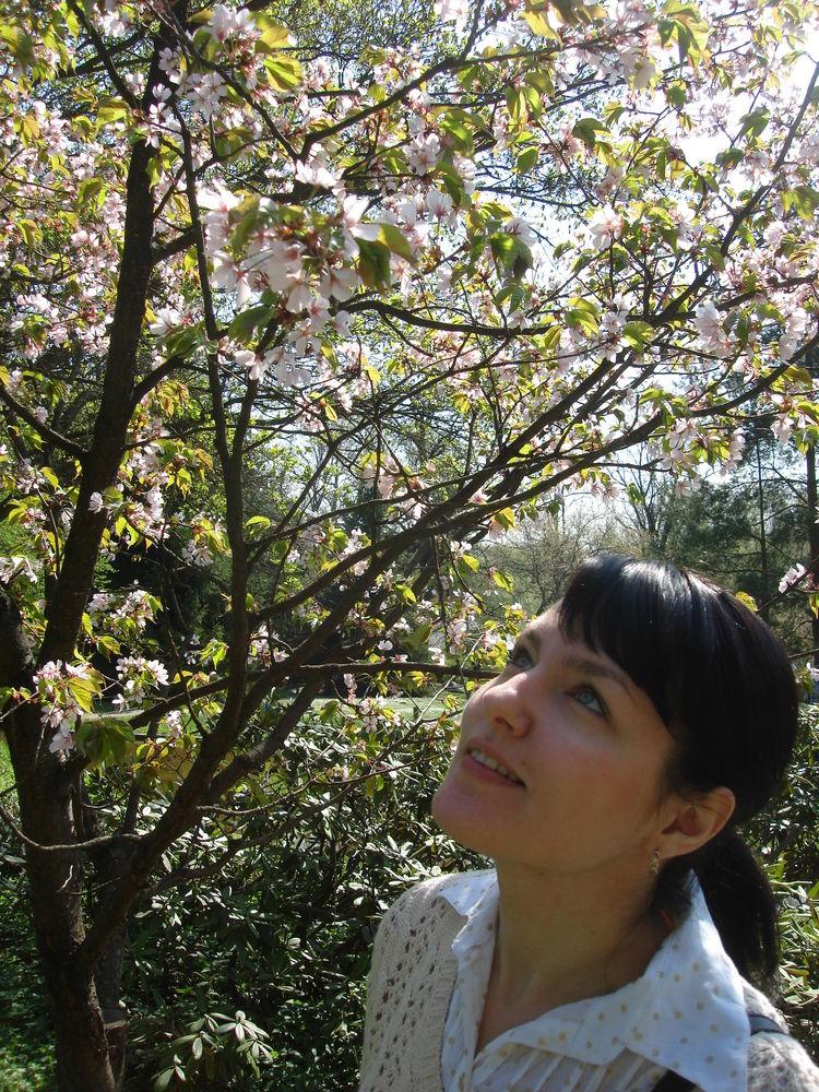 мацуо басе, хокку, япония, сакура, красивые стихи, романтика
