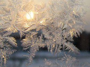 На окне, серебряном от инея, За ночь хризантемы расцвели... | Ярмарка Мастеров - ручная работа, handmade