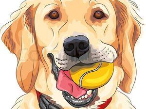Собаки раньше нас чувствуют неполадки в нашем теле.. Ярмарка Мастеров - ручная работа, handmade.
