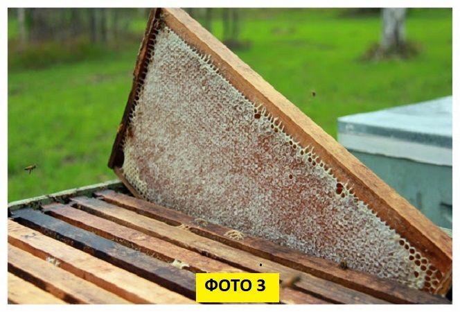 материалы для косметики, продукты пчеловодсвта