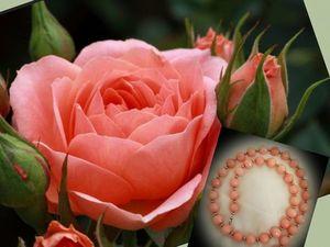 """Колье """"Лепесток розы""""! Представляем!. Ярмарка Мастеров - ручная работа, handmade."""