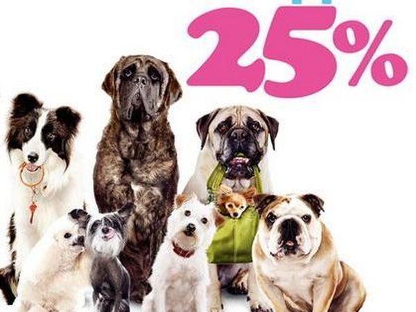 Год Собаки со скидкой 25%   Ярмарка Мастеров - ручная работа, handmade