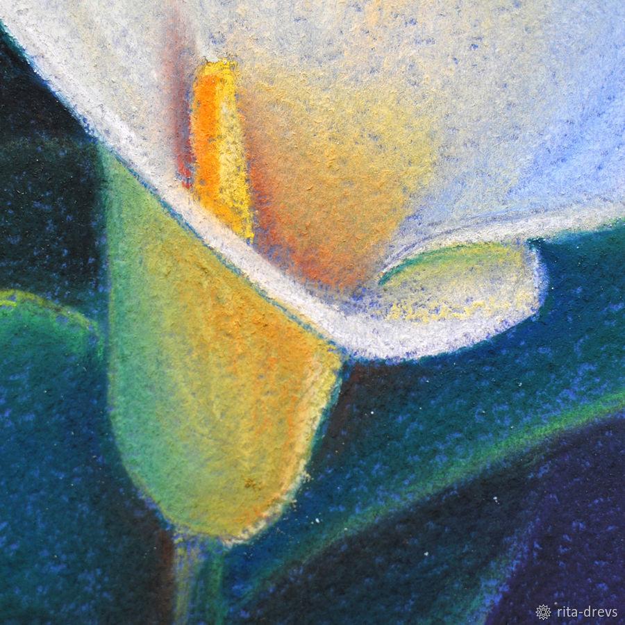 Рисуем пастелью изящный цветок каллы, фото № 13