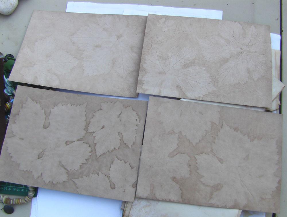 бумага с эко-принтом