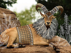 Индийский иллюстратор Rohan Sharad Dahotre и его необычный взгляд на животных. Ярмарка Мастеров - ручная работа, handmade.