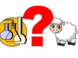 Овца против химии (что лучше: флис или натуральная шерсть?). Ярмарка Мастеров - ручная работа, handmade.