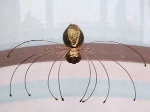 Создаём забавных паучков из орешков липы. Ярмарка Мастеров - ручная работа, handmade.