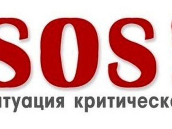 Sos!sos!sos!очень нужна ваша помощь | Ярмарка Мастеров - ручная работа, handmade