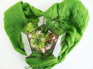 Срок жизни флорариума. Ярмарка Мастеров - ручная работа, handmade.