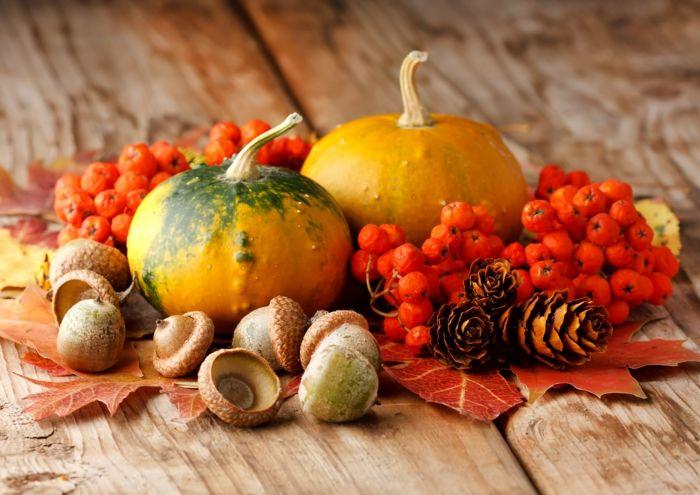 Осень - самое уютное время года 9c95a305809f8b14683ae9e9729w