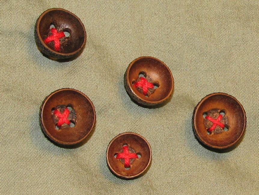 acorn cupule, гороскоп друидов