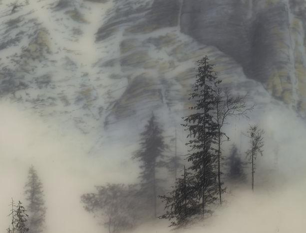 туманные пейзажи