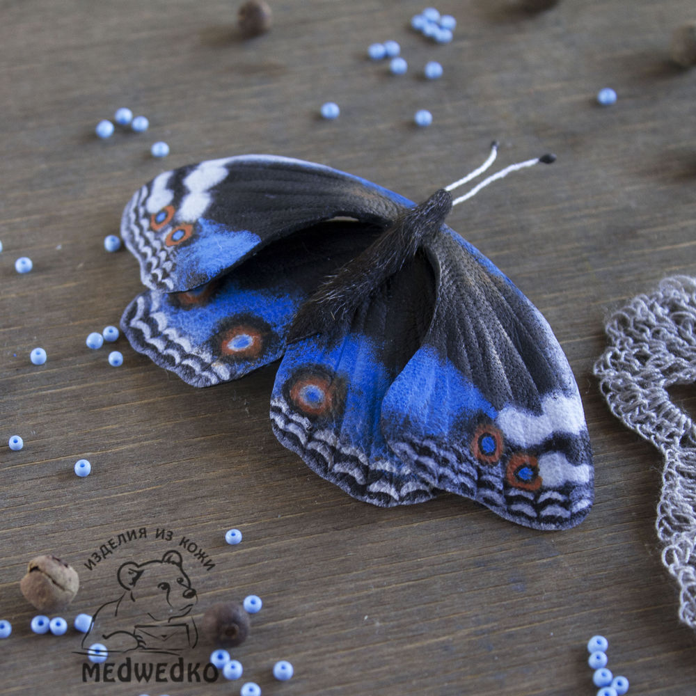 бабочка blue pansy