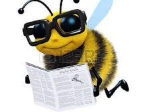Из жизни пчел. Занимательные истории. Часть 1. Ярмарка Мастеров - ручная работа, handmade.