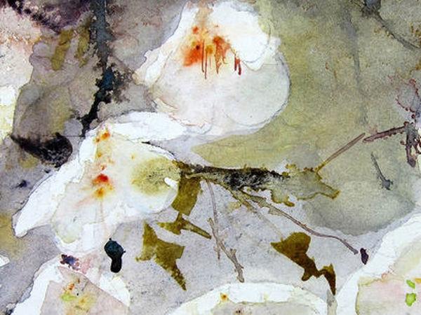 Лёгкость и изящество в акварелях Reine-Marie Pinchon