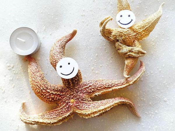 Морские звезды прибыли!!!  Цирк! Цирк! Цирк!   Ярмарка Мастеров - ручная работа, handmade