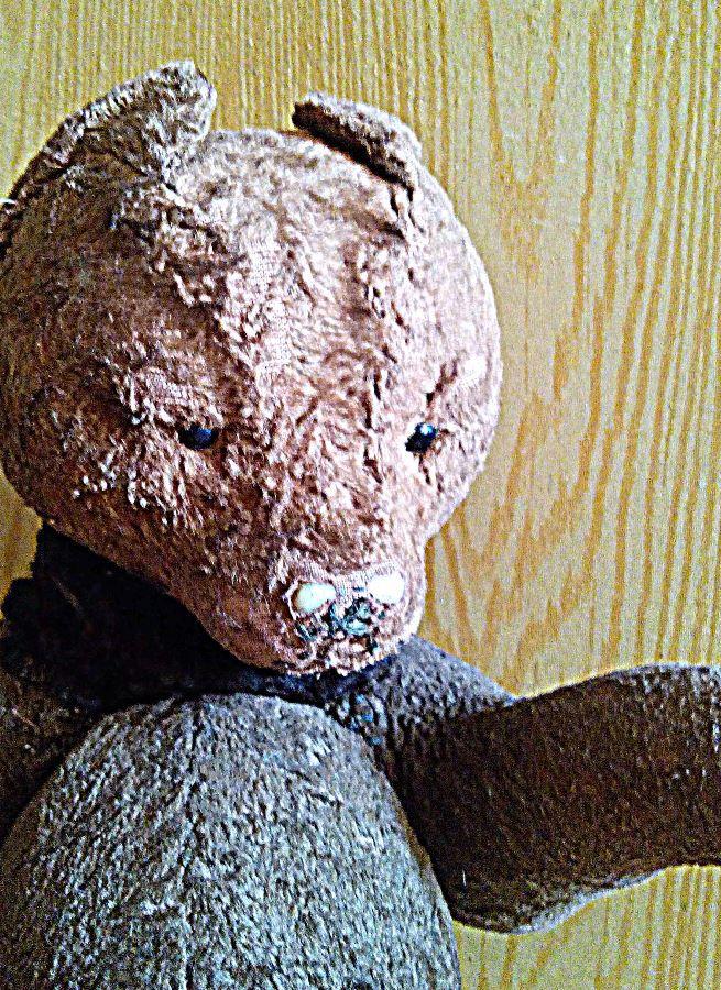 медведь, мишка тедди