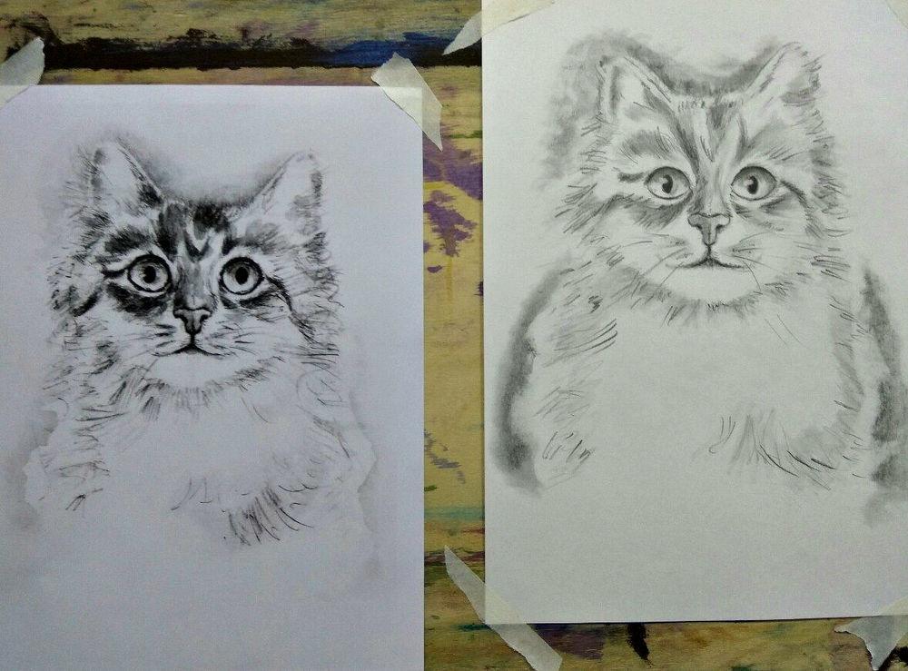 учусь рисовать, кошки, пейзаж, мастер-класс карандашом, школа рисования, обучение рисованию, картина карандашом