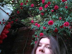 Грузия — страна контрастов и роз. Ярмарка Мастеров - ручная работа, handmade.