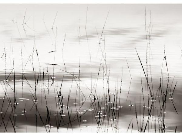 Первый всероссийский конкурс интерьерной авторской фотографии   Ярмарка Мастеров - ручная работа, handmade