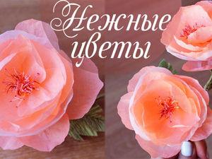 Создаем нежные розовые цветочки из крепированной бумаги. Ярмарка Мастеров - ручная работа, handmade.