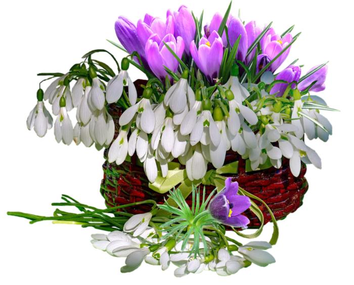 поздравление, женщине, весна, весенний, праздничный