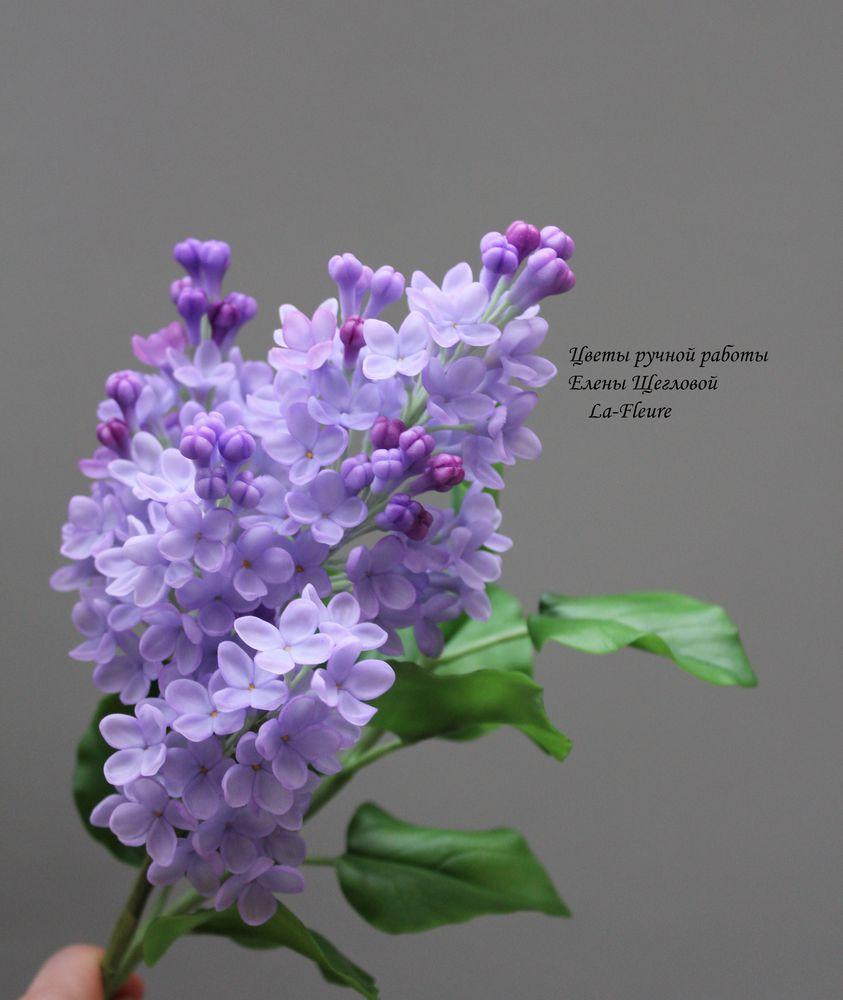 полимерная флористика, лепка цветов, флористика ручной работы