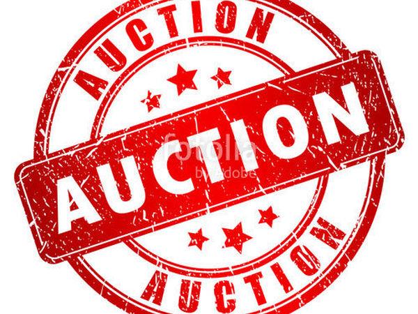 Многолотовый аукцион! Приглашаю!!! | Ярмарка Мастеров - ручная работа, handmade